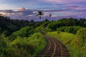 Photographing Bali – Temples, Waterfalls, Scuba Diving, Rice Terraces and Beaches