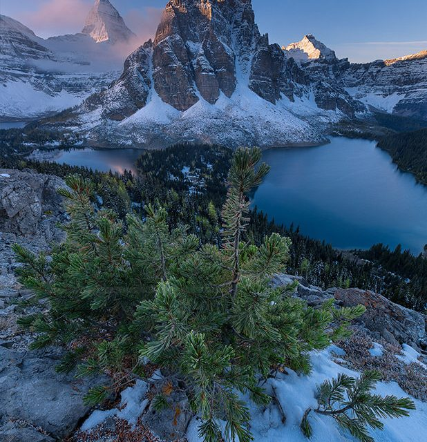 Majestic sunrise at Mount Assiniboine in the Canadian Rockies