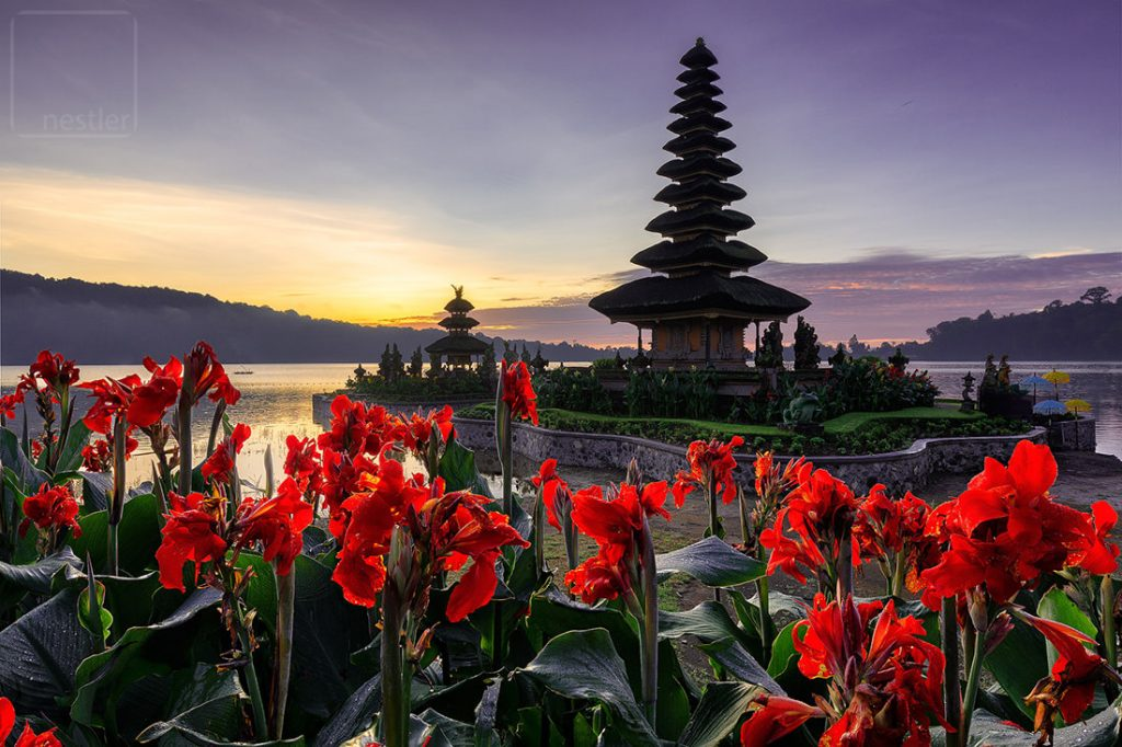 Water Temple at sunrise with red flowers